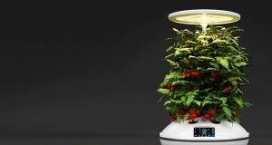 Smart AI Gardens: The Next Big Step in Hydroponics