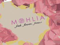 MOHLIA Flowers Banner